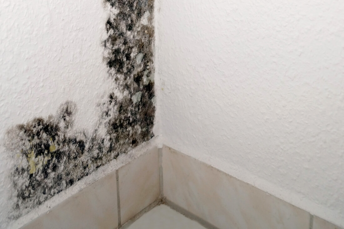 Humidite Qui Remonte Par Le Carrelage l'humidité dans les constructions - caue martinique